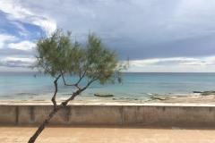 Cala Millor - Mallorca