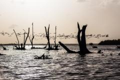 Bigi Pan - Suriname